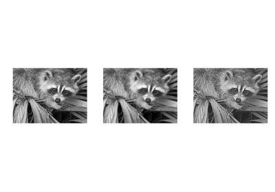 2 6  Image manipulation and processing using Numpy and Scipy